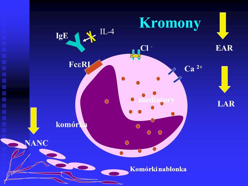 Kromony x Y x IL-4 IgE Cl - EAR FcRI Ca 2+ mediatory LAR komórka NANC