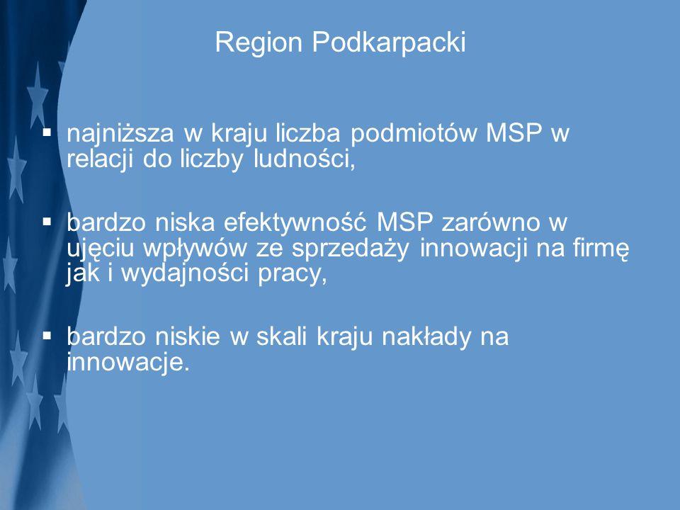 Region Podkarpacki najniższa w kraju liczba podmiotów MSP w relacji do liczby ludności,