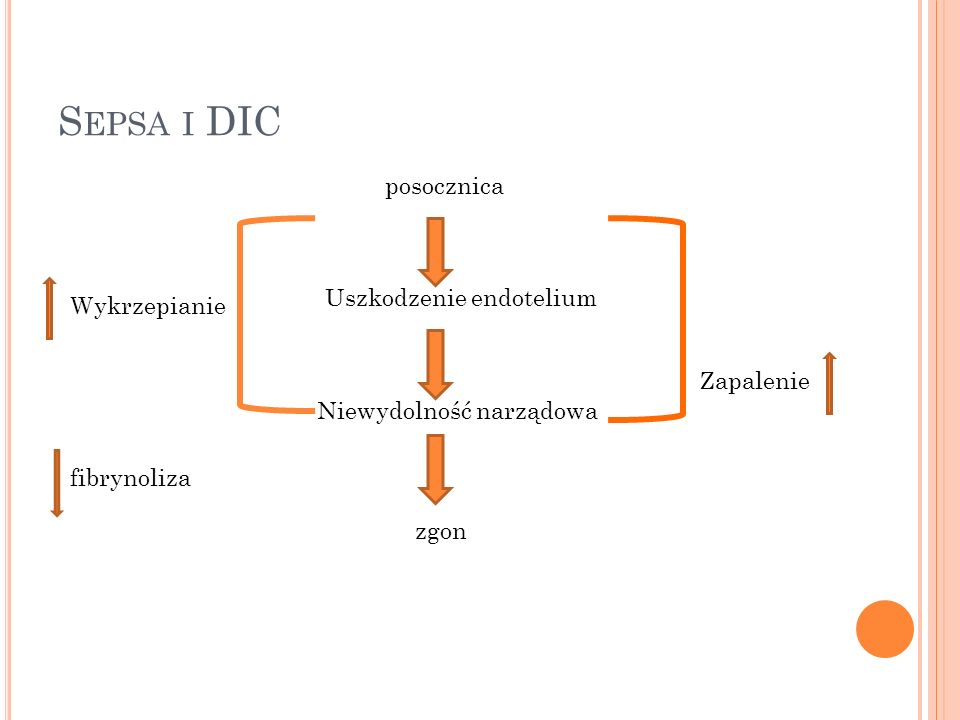 Sepsa i DIC posocznica Uszkodzenie endotelium Wykrzepianie Zapalenie