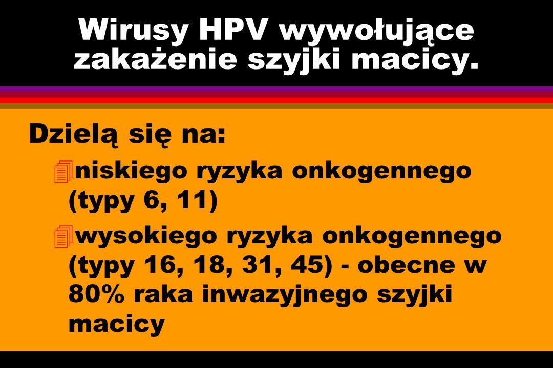Wirusy HPV wywołujące zakażenie szyjki macicy.