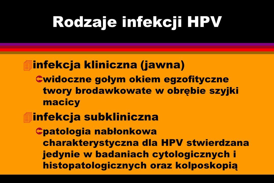Rodzaje infekcji HPV infekcja kliniczna (jawna) infekcja subkliniczna