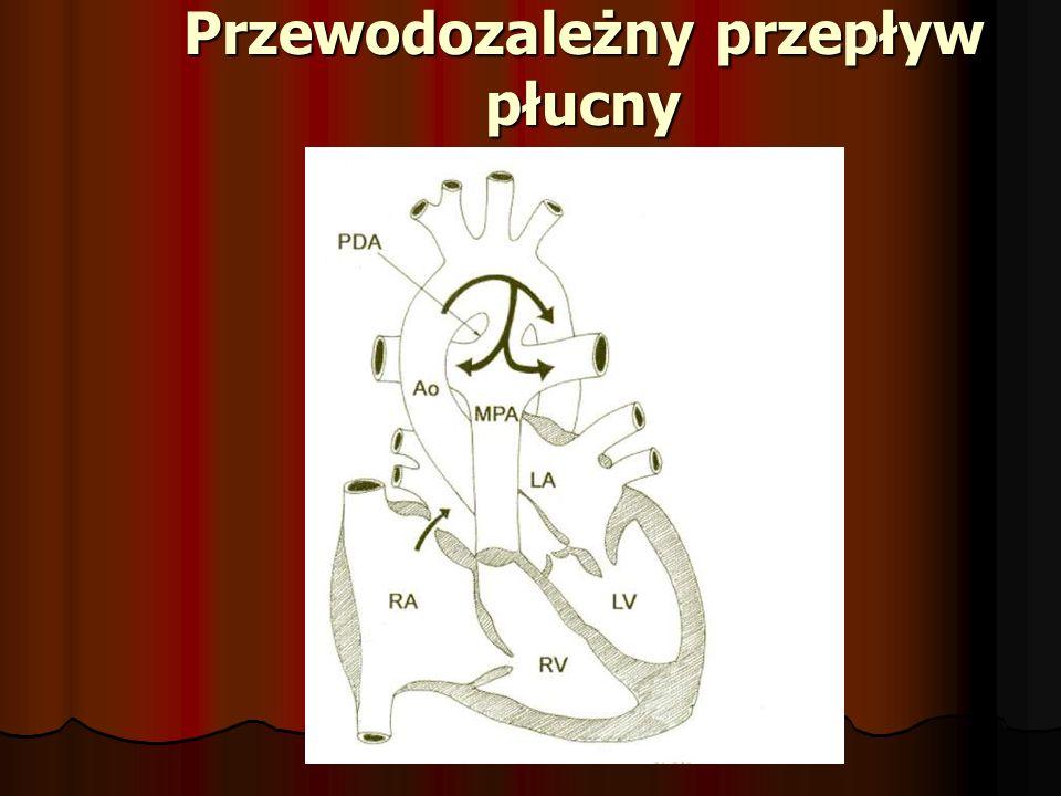 Przewodozależny przepływ płucny