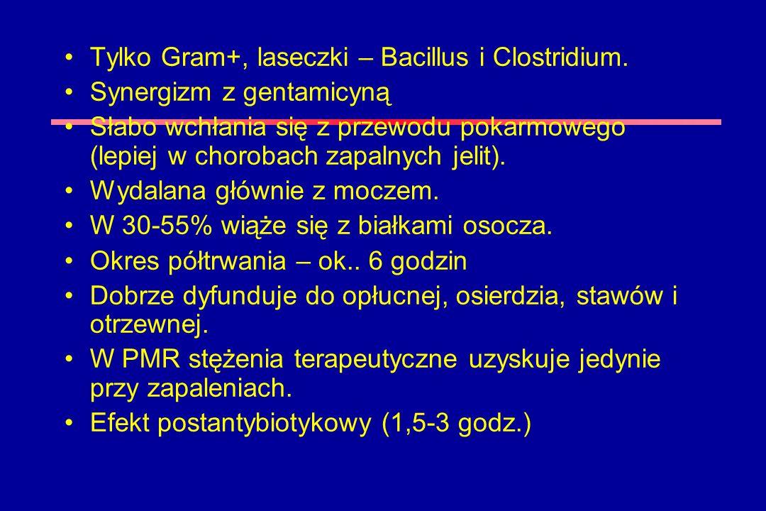 Tylko Gram+, laseczki – Bacillus i Clostridium.