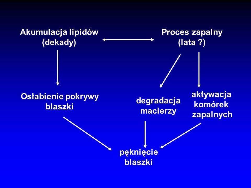 Akumulacja lipidów (dekady) Proces zapalny. (lata ) aktywacja. komórek. zapalnych. Osłabienie pokrywy.