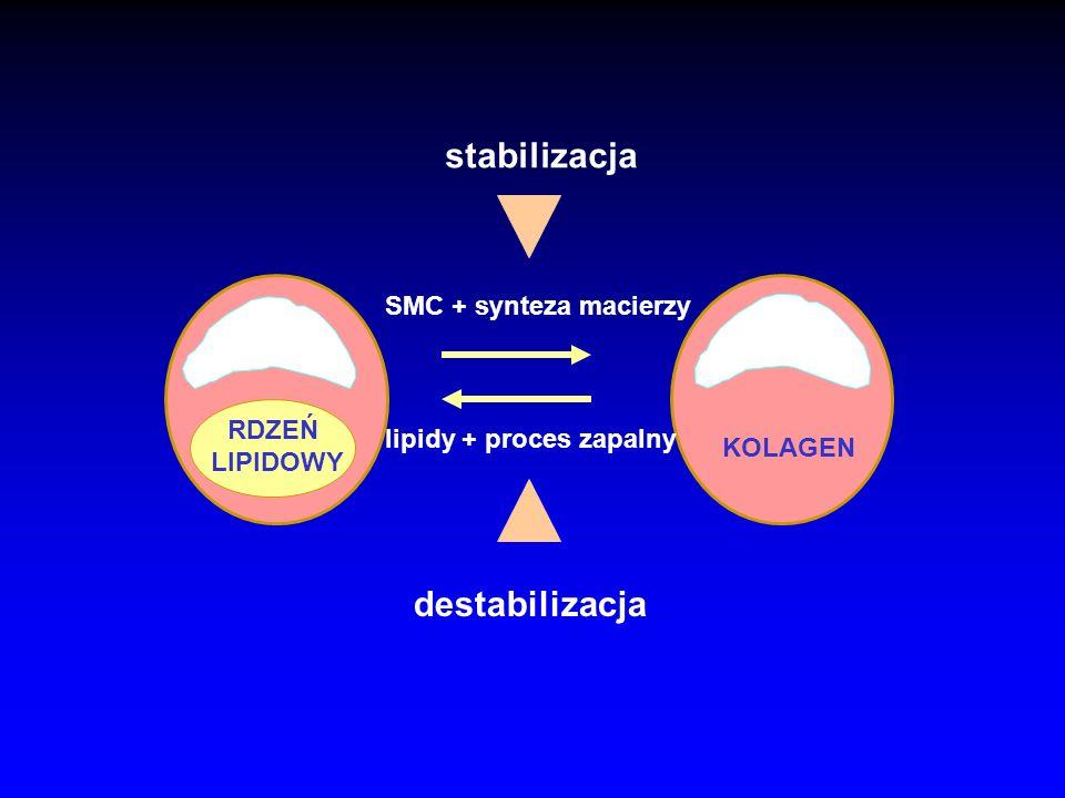 lipidy + proces zapalny