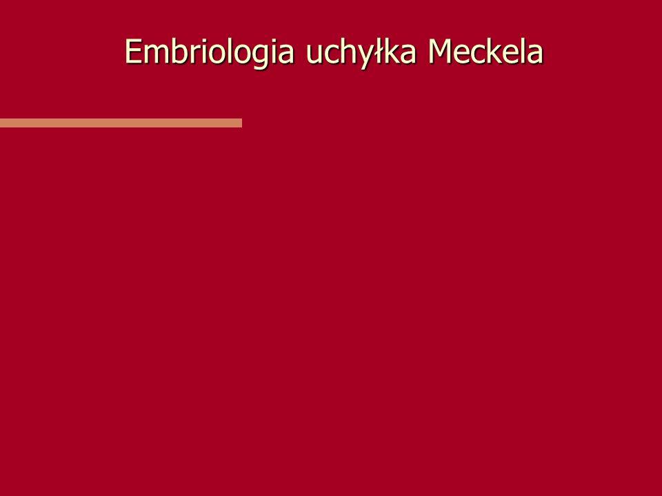 Embriologia uchyłka Meckela