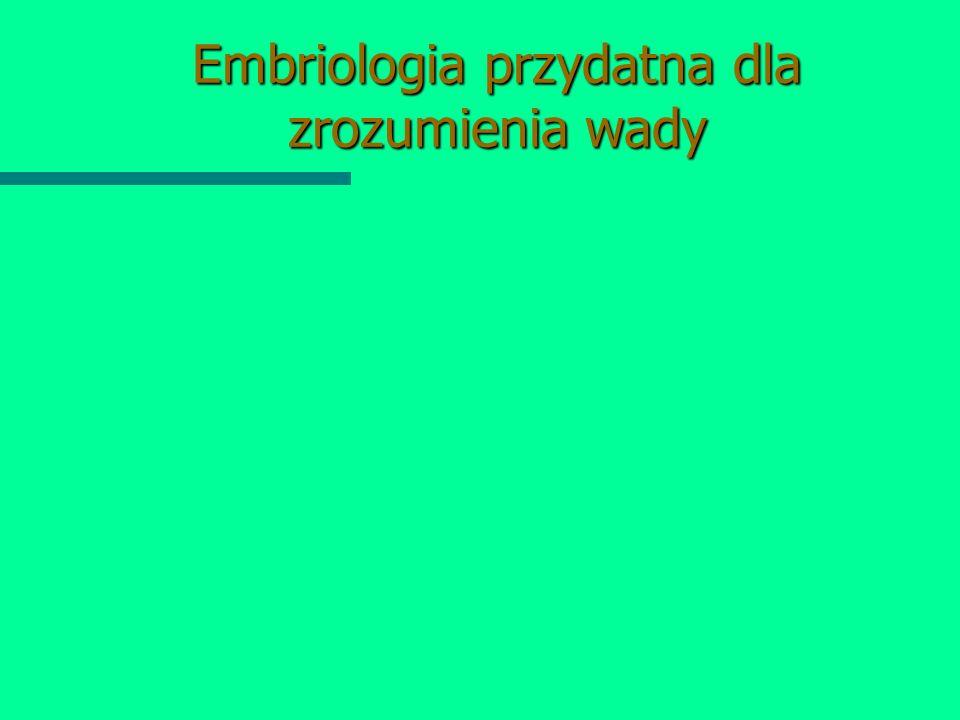 Embriologia przydatna dla zrozumienia wady