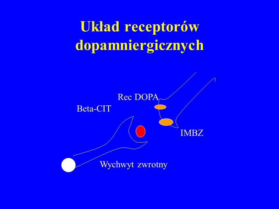 Układ receptorów dopamniergicznych