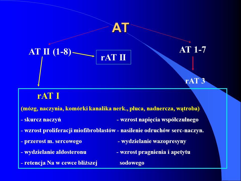 AT AT 1-7 AT II (1-8) rAT I rAT II rAT 3
