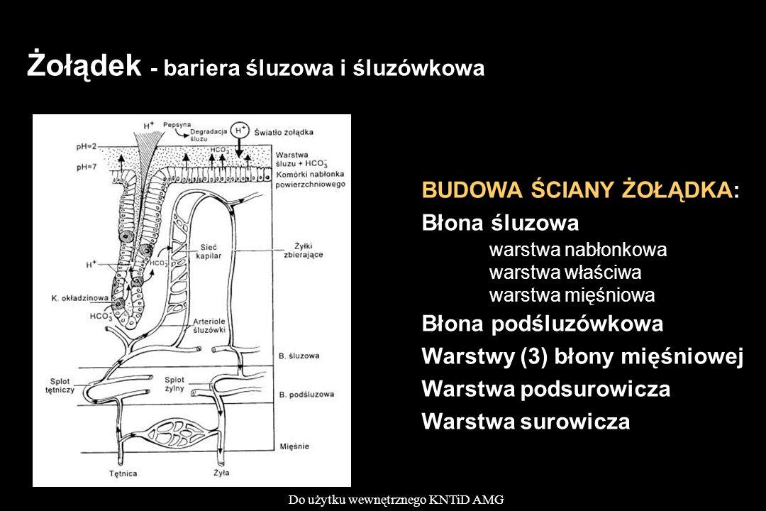 Żołądek - bariera śluzowa i śluzówkowa
