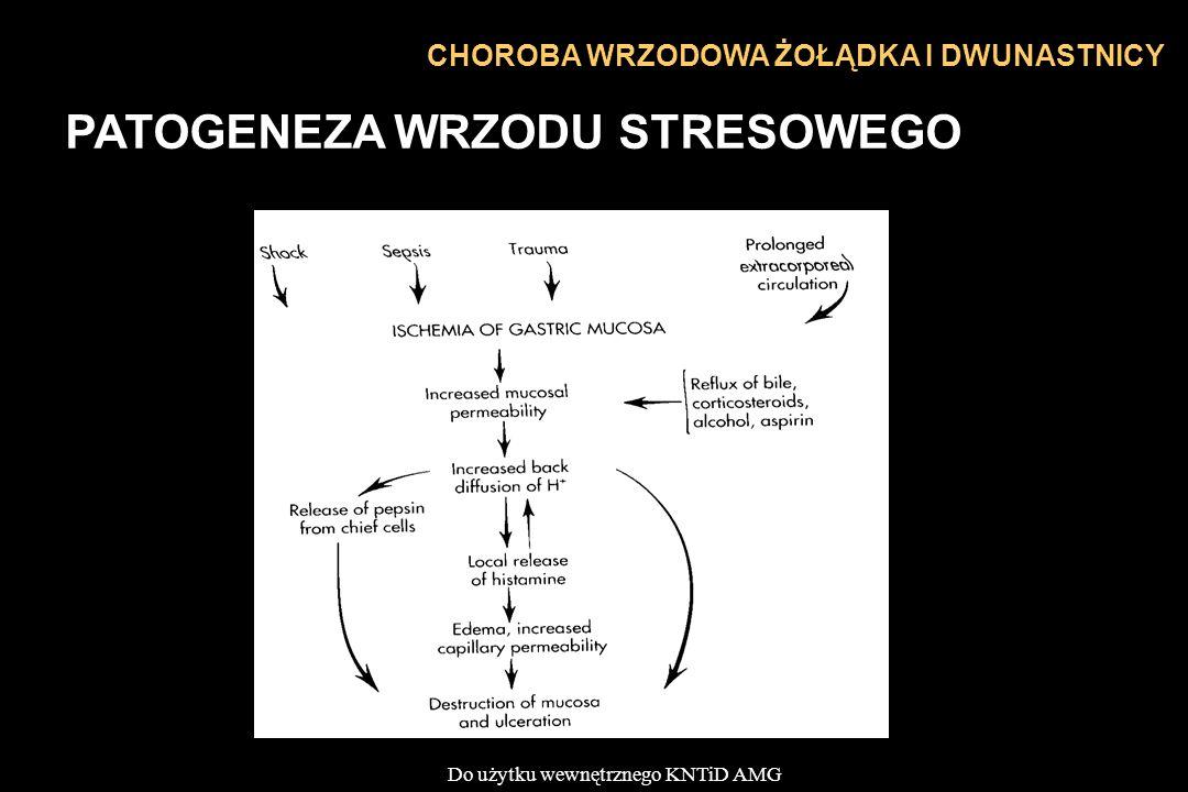 PATOGENEZA WRZODU STRESOWEGO