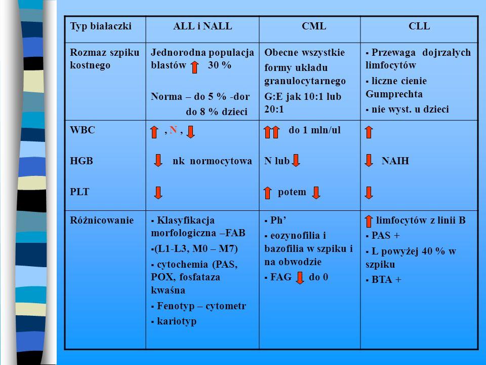 Typ białaczki ALL i NALL. CML. CLL. Rozmaz szpiku kostnego. Jednorodna populacja blastów 30 %