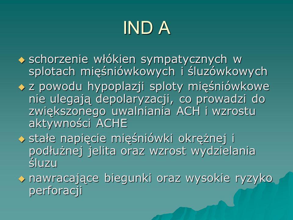 IND A schorzenie włókien sympatycznych w splotach mięśniówkowych i śluzówkowych.
