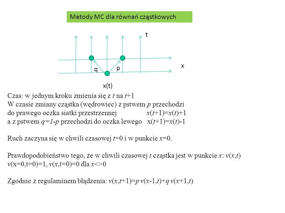 Metody MC dla równań cząstkowych