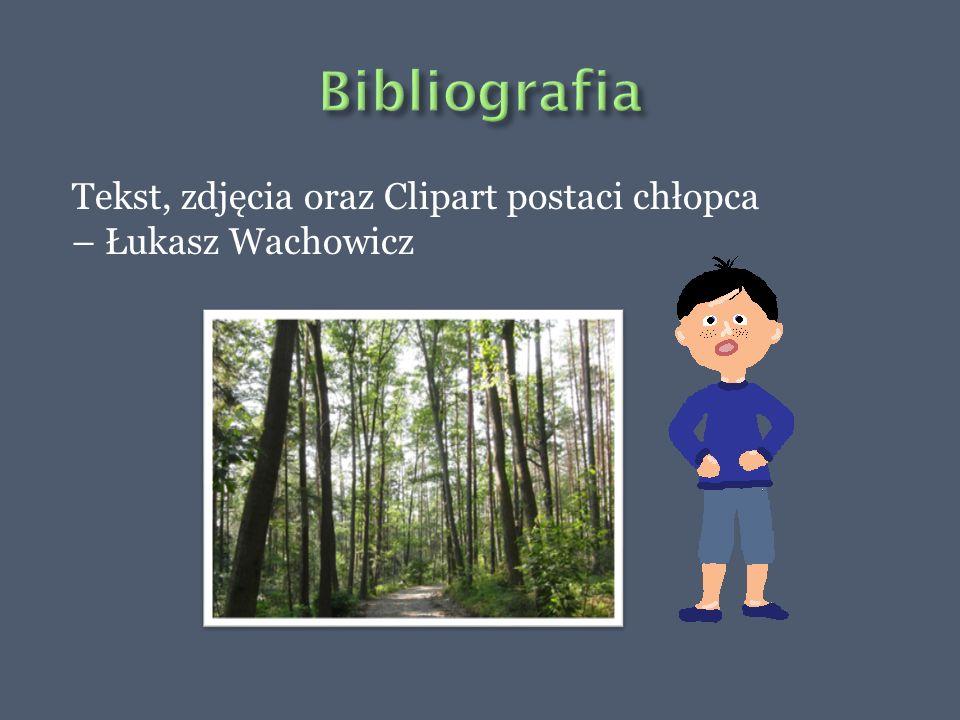 Bibliografia Tekst, zdjęcia oraz Clipart postaci chłopca – Łukasz Wachowicz