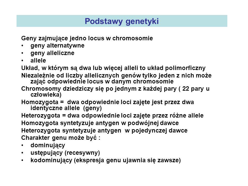 Podstawy genetyki Geny zajmujące jedno locus w chromosomie