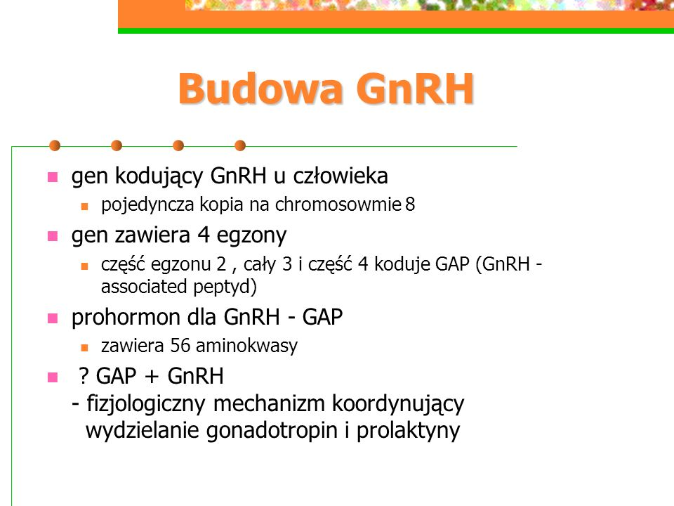 Budowa GnRH gen kodujący GnRH u człowieka gen zawiera 4 egzony