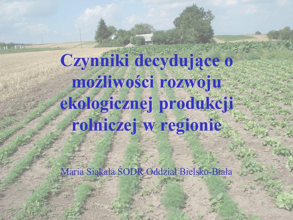 Maria Siąkała ŚODR Oddział Bielsko-Biała