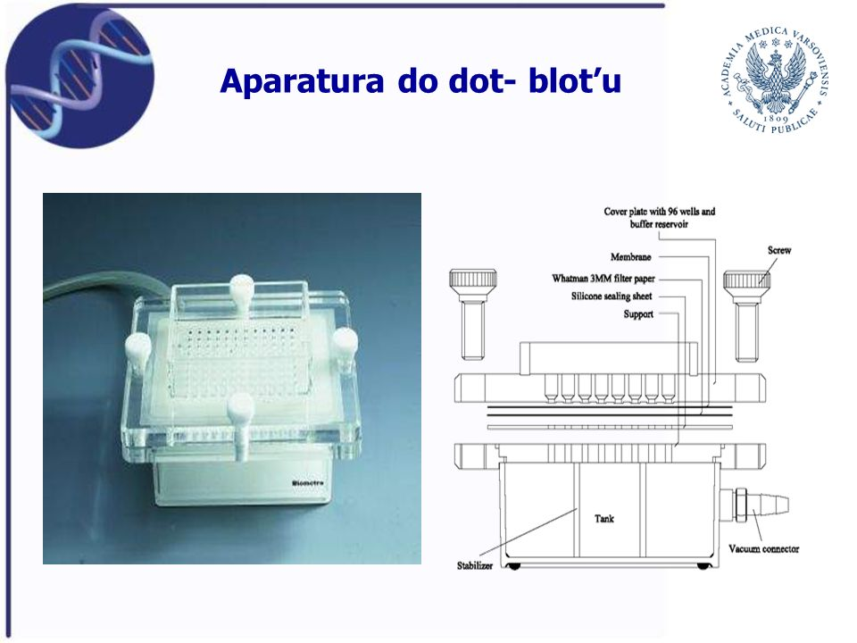 Aparatura do dot- blot'u