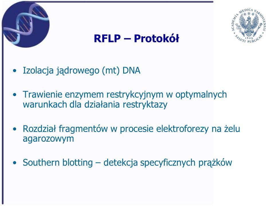 RFLP – Protokół Izolacja jądrowego (mt) DNA