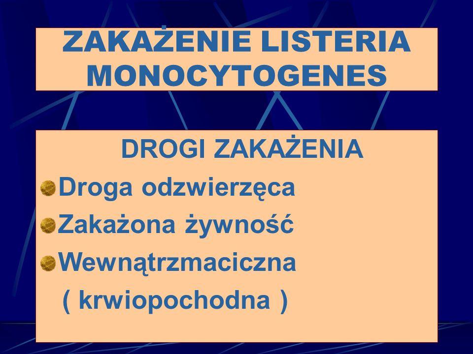 ZAKAŻENIE LISTERIA MONOCYTOGENES