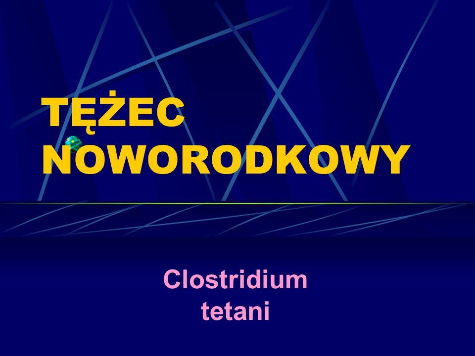 TĘŻEC NOWORODKOWY Clostridium tetani