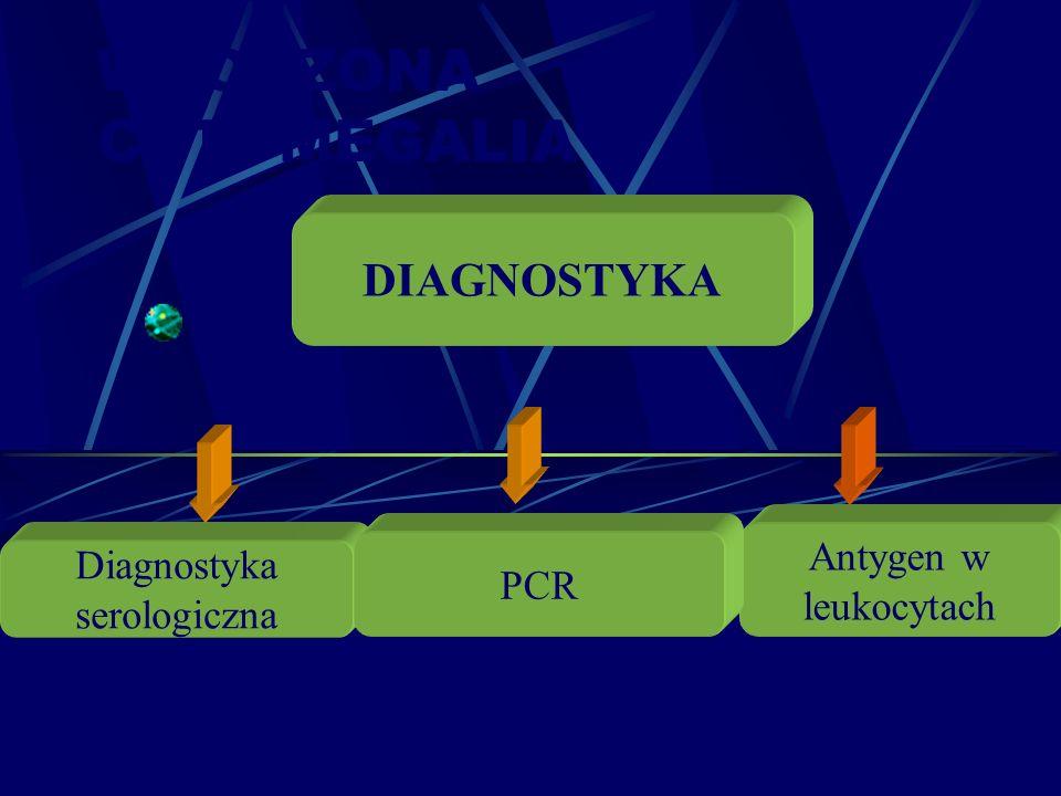 WRODZONA CYTOMEGALIA DIAGNOSTYKA Antygen w Diagnostyka PCR leukocytach