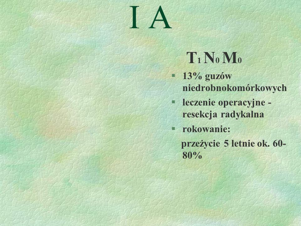 I A T1 N0 M0 13% guzów niedrobnokomórkowych