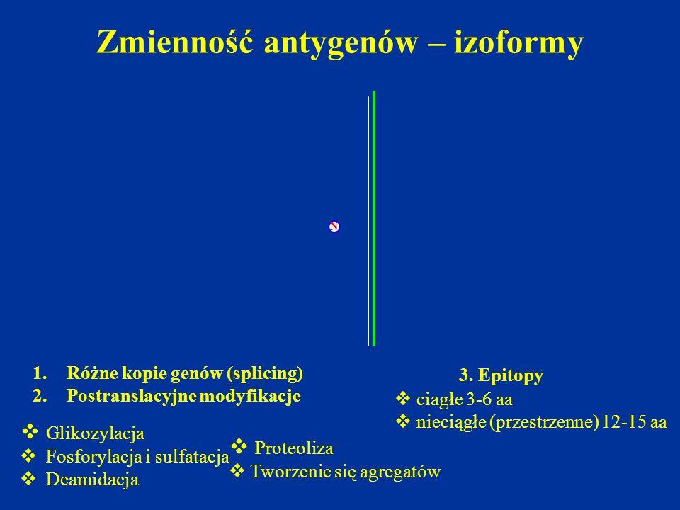 Zmienność antygenów – izoformy