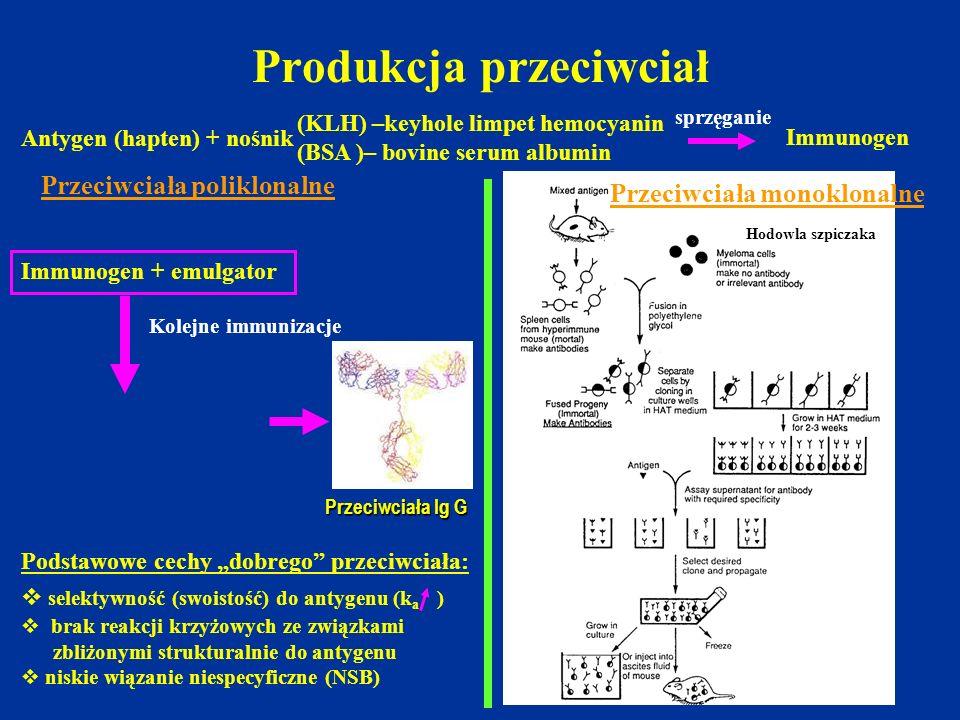 Produkcja przeciwciał