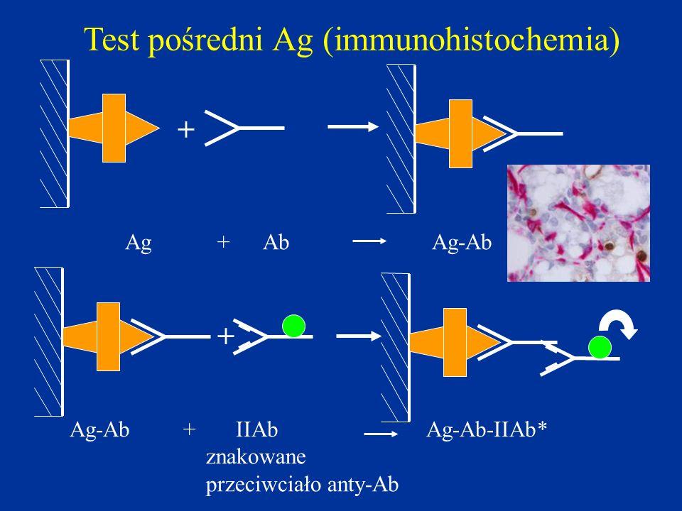Test pośredni Ag (immunohistochemia)