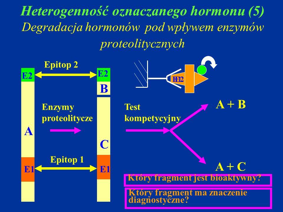 Heterogenność oznaczanego hormonu (5) Degradacja hormonów pod wpływem enzymów proteolitycznych