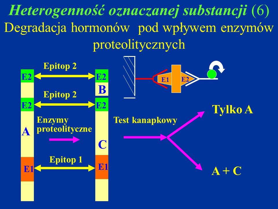 Heterogenność oznaczanej substancji (6) Degradacja hormonów pod wpływem enzymów proteolitycznych