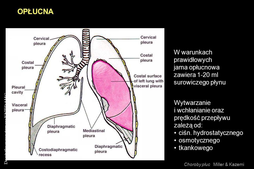 OPŁUCNA W warunkach. prawidłowych jama opłucnowa zawiera 1-20 ml surowiczego płynu. Wytwarzanie i wchłanianie oraz prędkość przepływu zależą od: