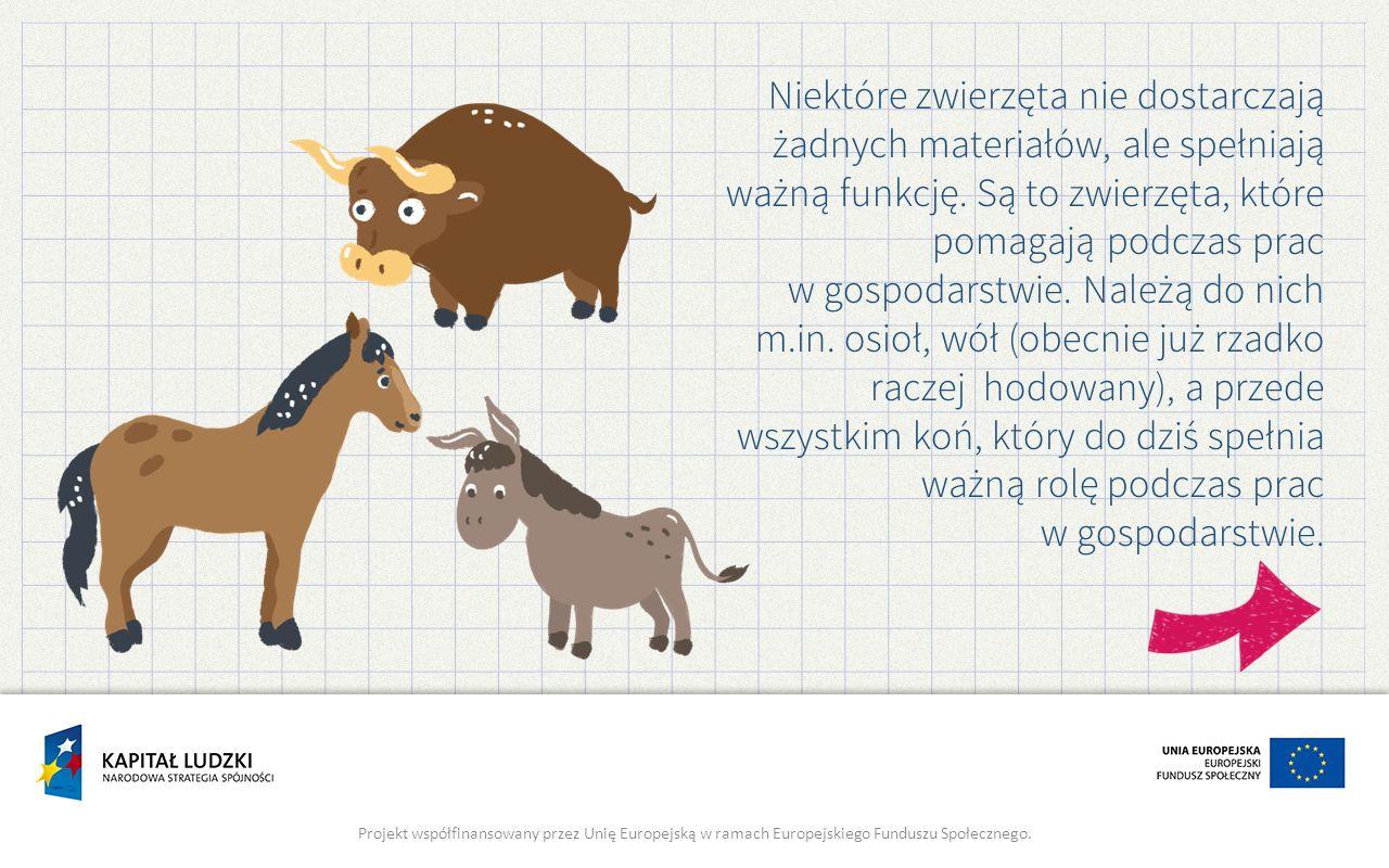 Niektóre zwierzęta nie dostarczają żadnych materiałów, ale spełniają ważną funkcję. Są to zwierzęta, które pomagają podczas prac w gospodarstwie. Należą do nich m.in. osioł, wół (obecnie już rzadko raczej hodowany), a przede wszystkim koń, który do dziś spełnia ważną rolę podczas prac w gospodarstwie.