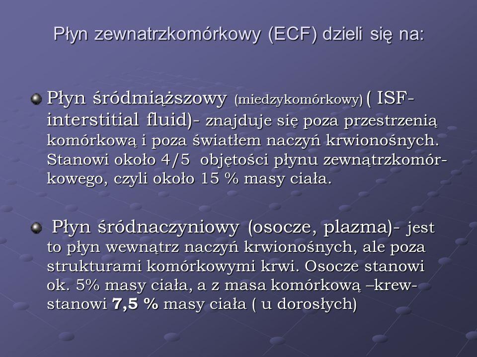 Płyn zewnatrzkomórkowy (ECF) dzieli się na: