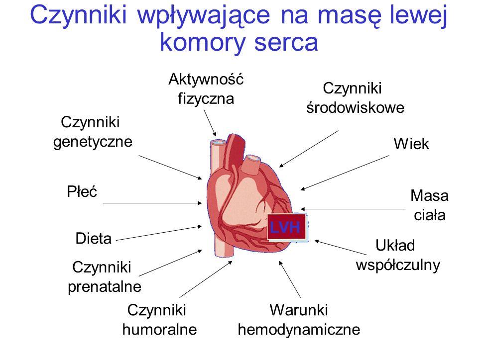 Czynniki wpływające na masę lewej komory serca
