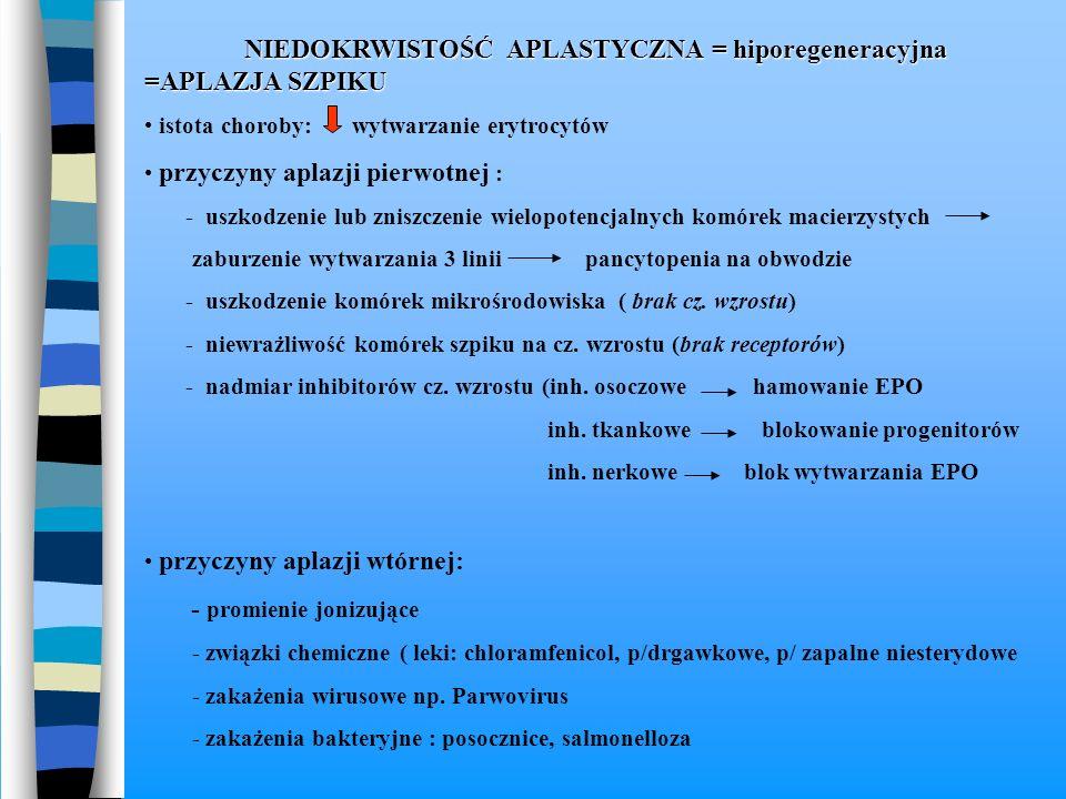 NIEDOKRWISTOŚĆ APLASTYCZNA = hiporegeneracyjna =APLAZJA SZPIKU