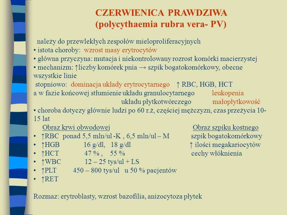CZERWIENICA PRAWDZIWA (polycythaemia rubra vera- PV)