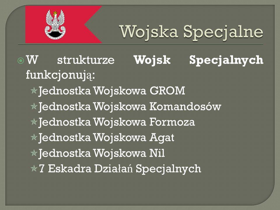 Wojska Specjalne W strukturze Wojsk Specjalnych funkcjonują: