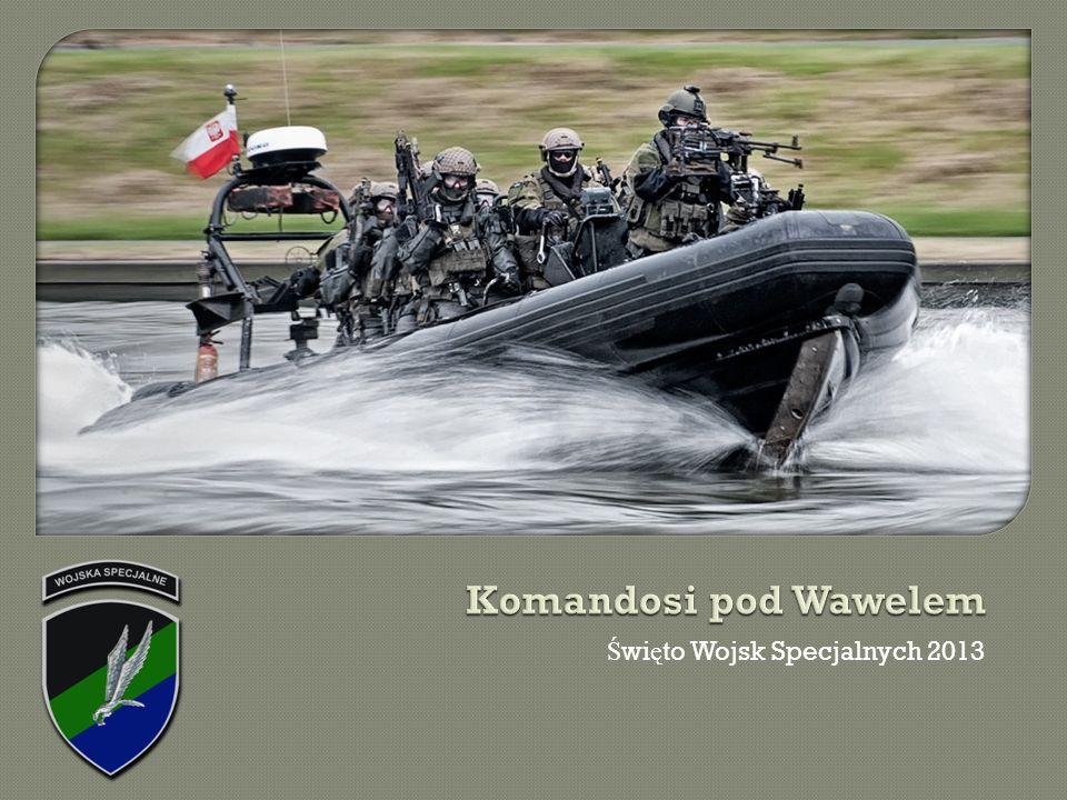 Komandosi pod Wawelem Święto Wojsk Specjalnych 2013