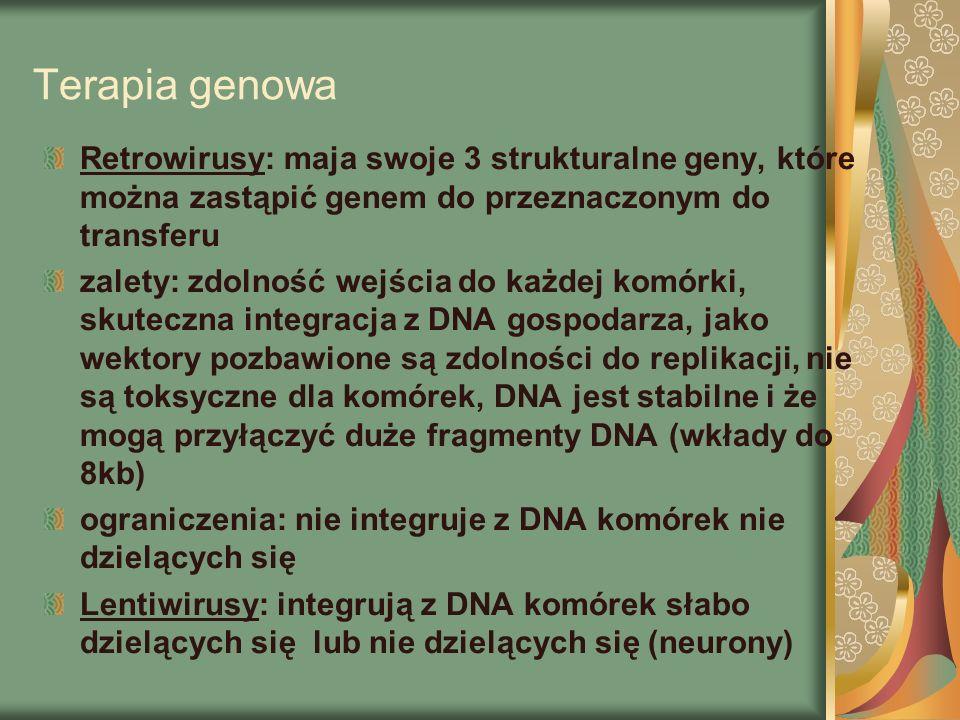 Terapia genowa Retrowirusy: maja swoje 3 strukturalne geny, które można zastąpić genem do przeznaczonym do transferu.