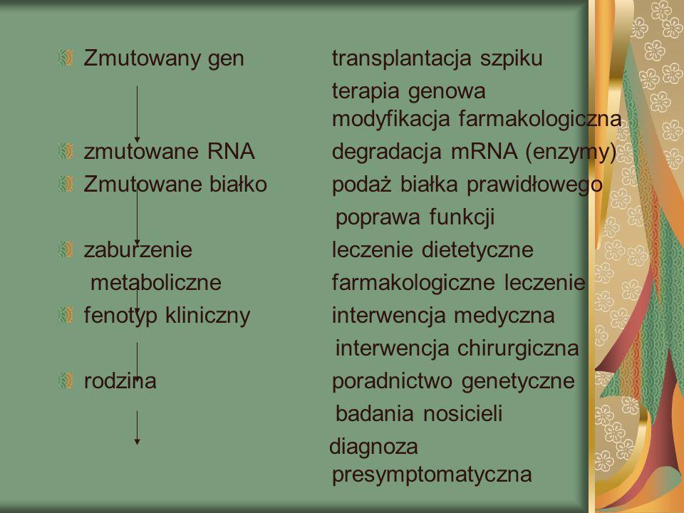 Zmutowany gen transplantacja szpiku