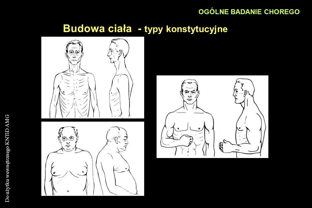 Budowa ciała - typy konstytucyjne
