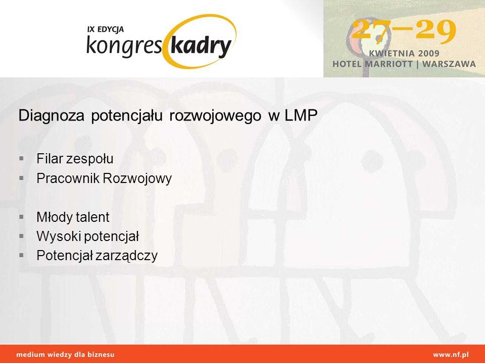 Diagnoza potencjału rozwojowego w LMP