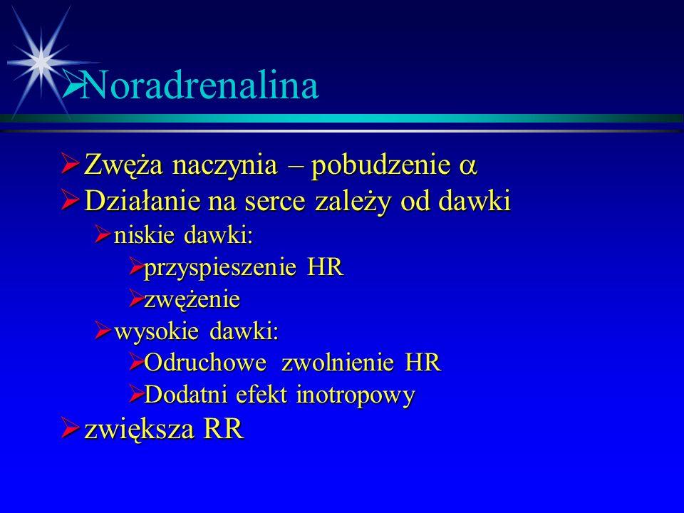 Noradrenalina Zwęża naczynia – pobudzenie a