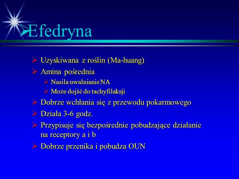 Efedryna Uzyskiwana z roślin (Ma-huang) Amina pośrednia
