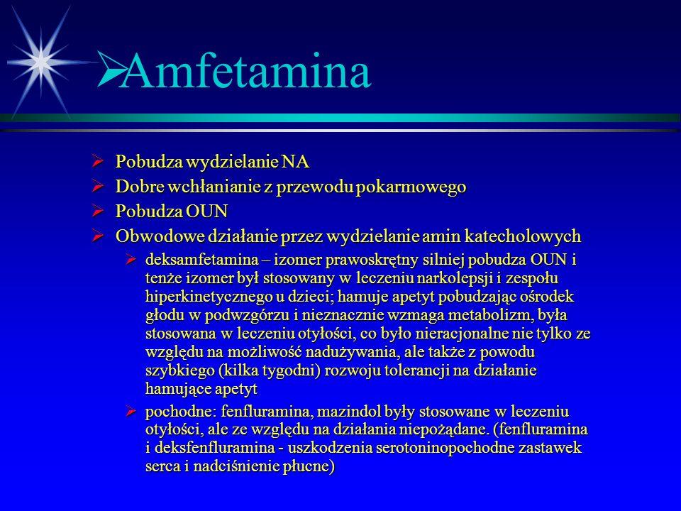 Amfetamina Pobudza wydzielanie NA