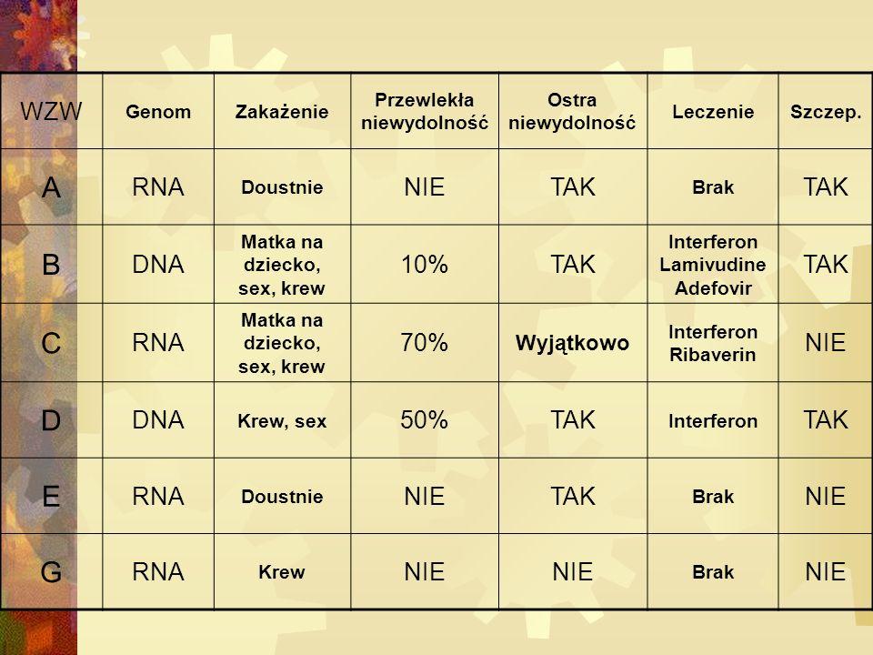 A B C D E G WZW RNA NIE TAK DNA 10% 70% 50% Wyjątkowo Genom Zakażenie