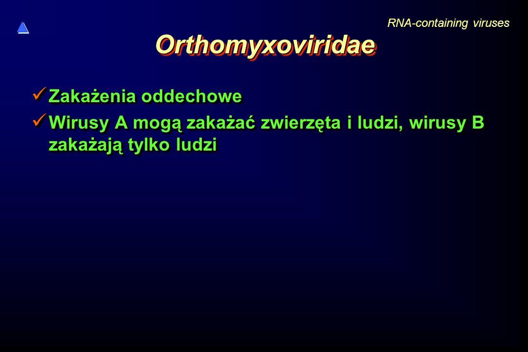 Orthomyxoviridae Zakażenia oddechowe